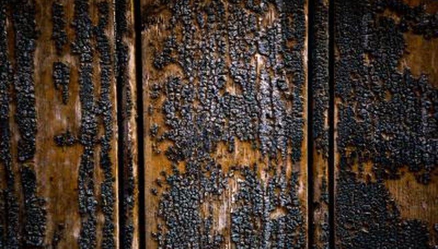 Restore burnt wood before painting.