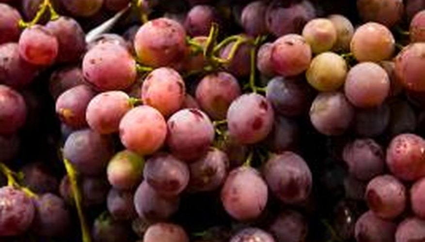 Grapes contain a high volume of tartaric acid.