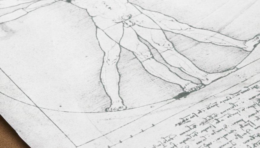 Leonardo da Vinci often combined knowledge from multiple fields into single projects, reflecting the humanist ideal of seeking truth across multiple fields.