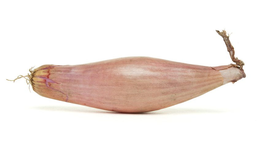 Banana shallots can sometimes be tricky to find.