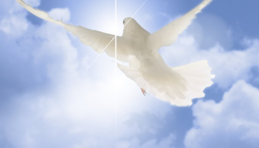 The Holy Spirit is often symbolized by a dove.