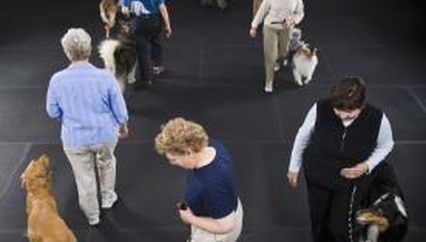 Many industrial flooring solutions are also wallet-friendly for large indoor training facilities.