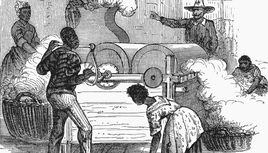 Slaves labored at cotton gins throughout the South
