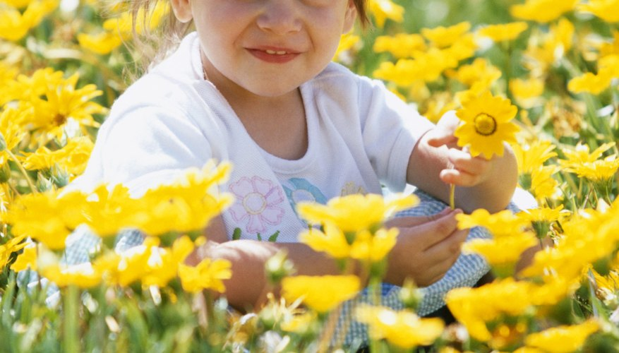 Usher in warmer weather with delicious spring crafts.