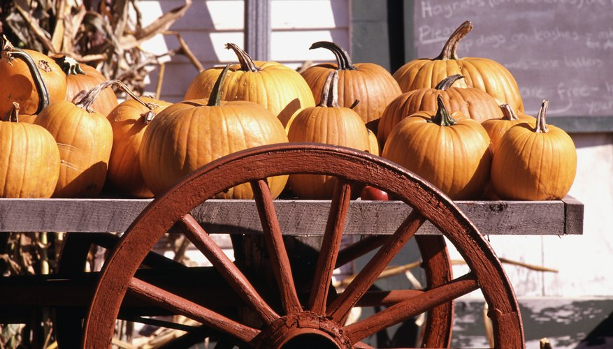 Pumpkins are part of the fall festival.