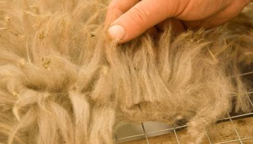 Natural wool fibres can be blended with nylon.