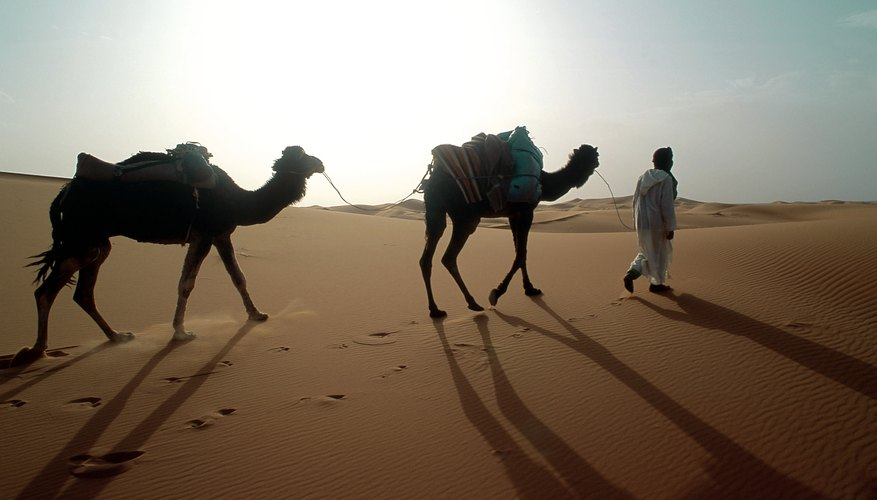 The desert Arabs had no problems adapting to a military life on the move.