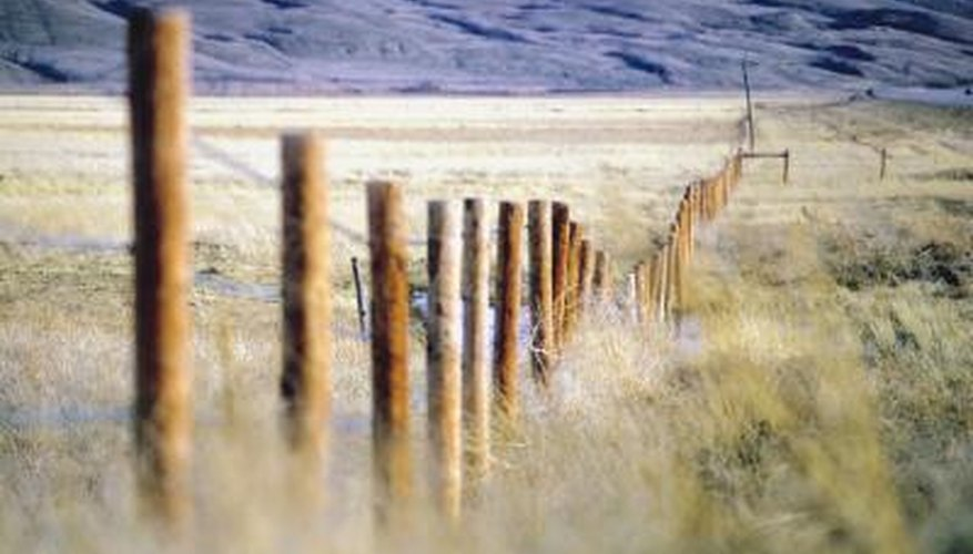 Fence posts serve as the skeletal structure that holds your fence in place.