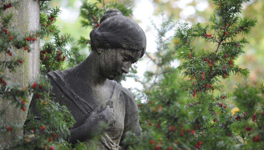 A close-up of a  stone statue in a shrub with red berries at a cemetary.