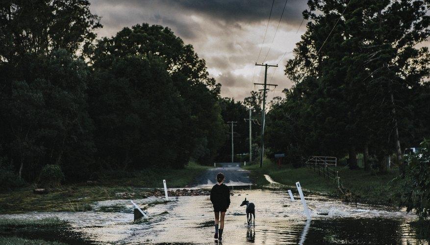 Harmful Effects of Cyclones | Sciencing
