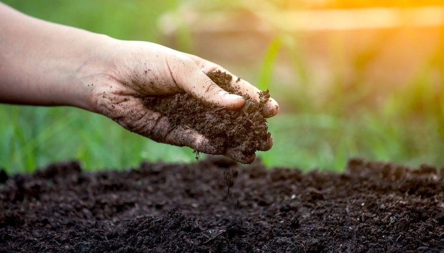 Types Of Soil  U0026 Their Uses