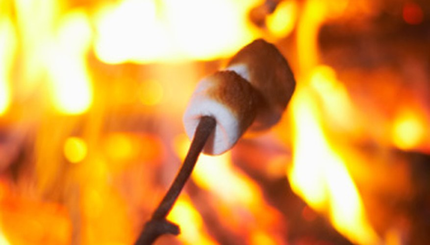 Roast marshmallows and learn about the grieving process at Camp Erin.