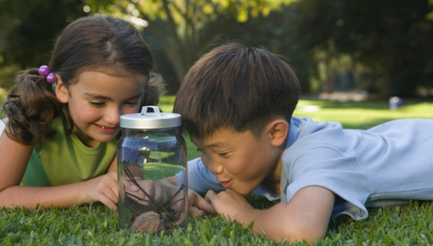 Curiosity in children about scientific elements helps them learn the scientific method.