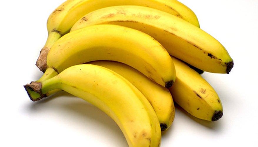 Es fácil extraer el ADN de los bananos.