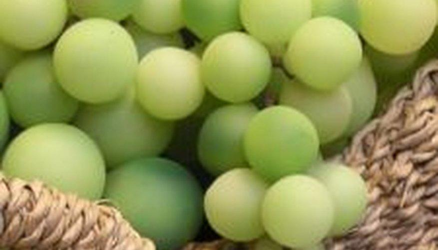 Las decoraciones con frutas artificiales son muy populares.