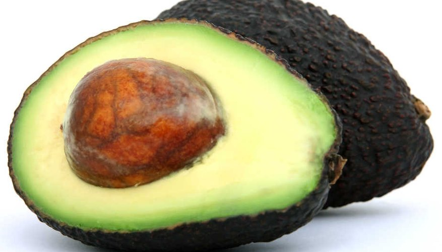 Fresh avocados are easy to grow with proper care and tree maintenance.