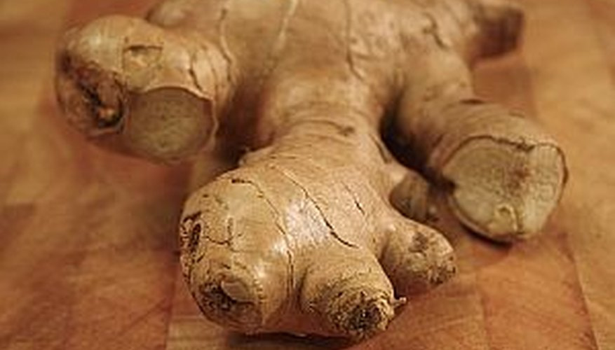 Plant ginger to provide ginger root for cooking.