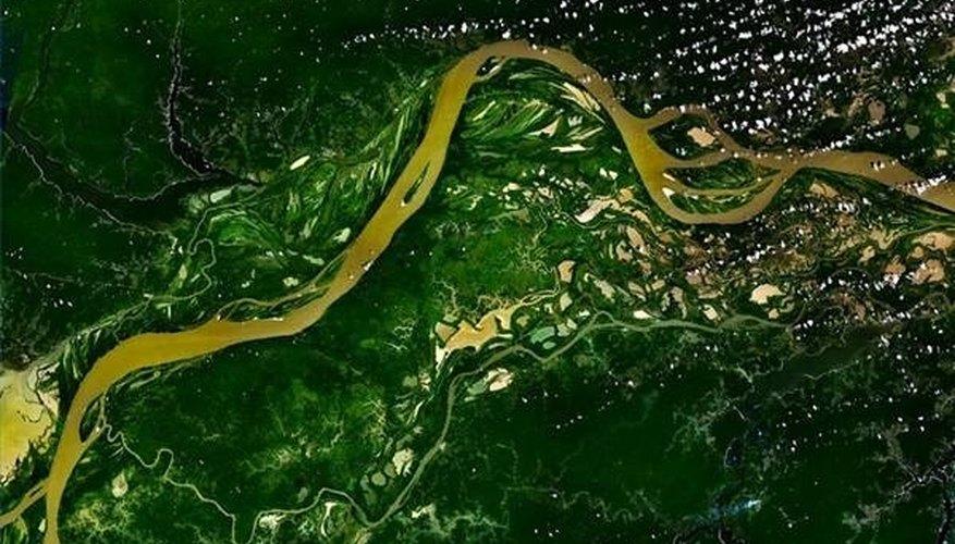 Amazon River flowing through the Rainforest
