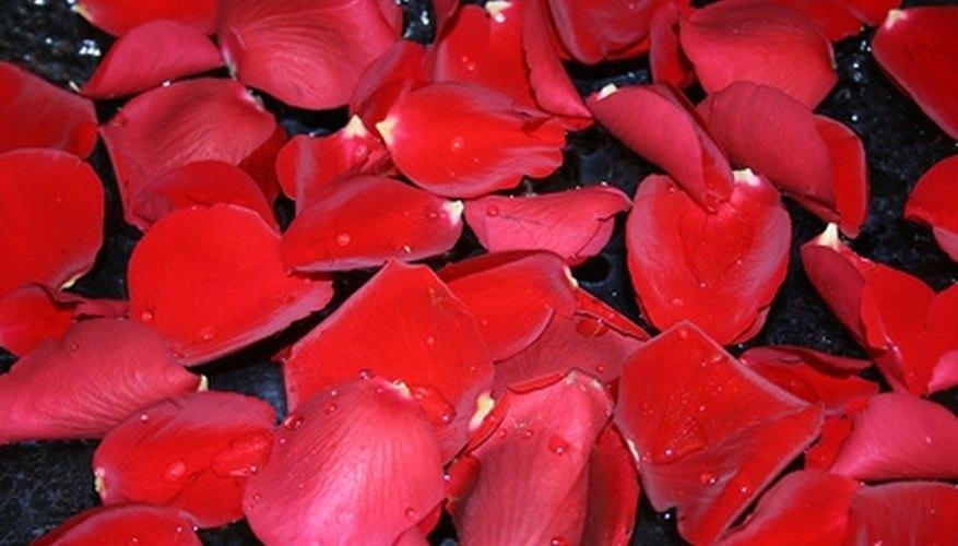 Decorate romantic cupcakes with fresh rose petals.
