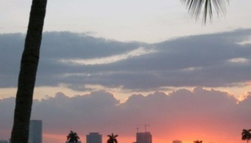 There's plenty of romance in Miami.