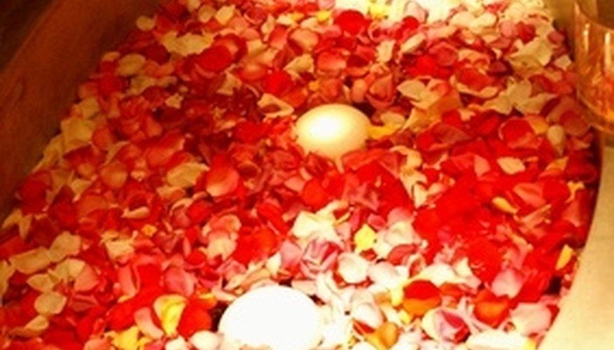 Floating rose petals