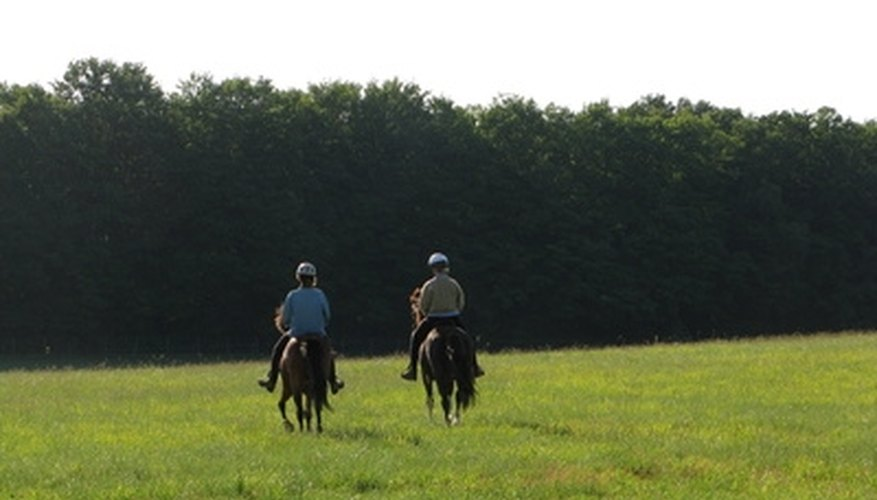 A scenic ride on horseback is a romantic date option.