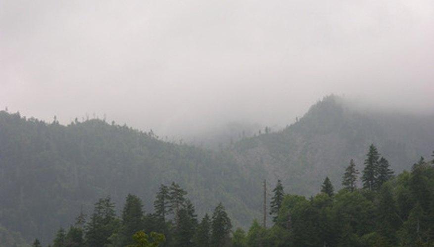 Gatlinburg is located near the Smoky Mountains.