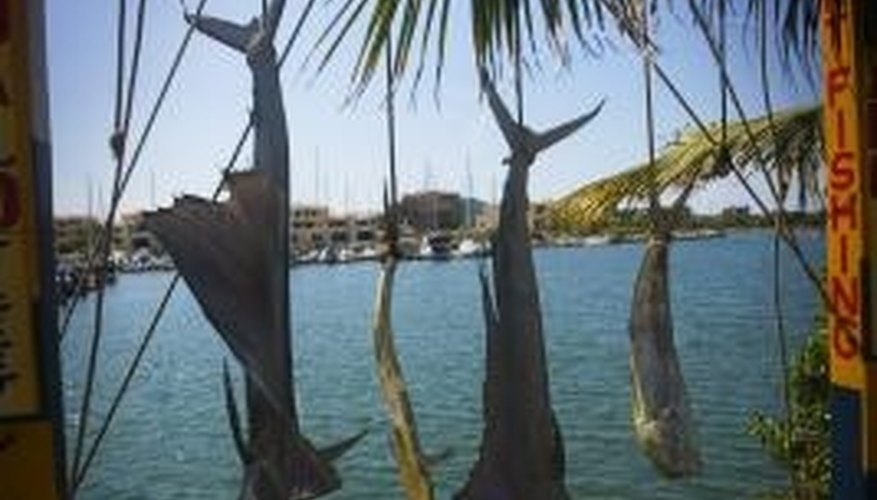 Many tourists visit Mexico for the deep-sea sport fishing.