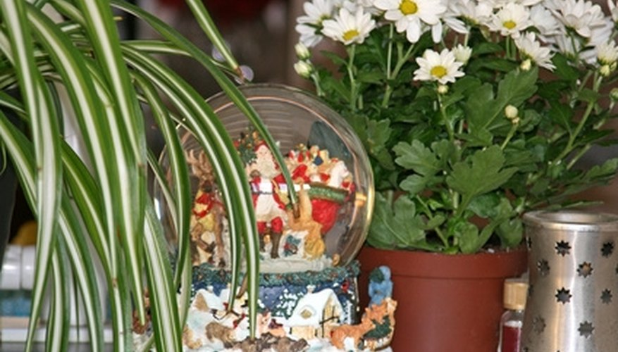 If you are careful, you can change the water in an old snow globe.