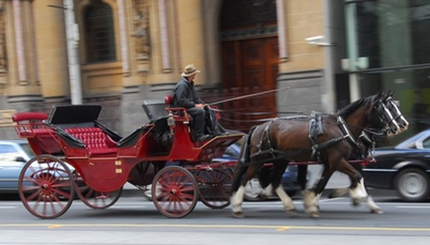 Take your date on a romantic carriage ride for Valentine's Day.