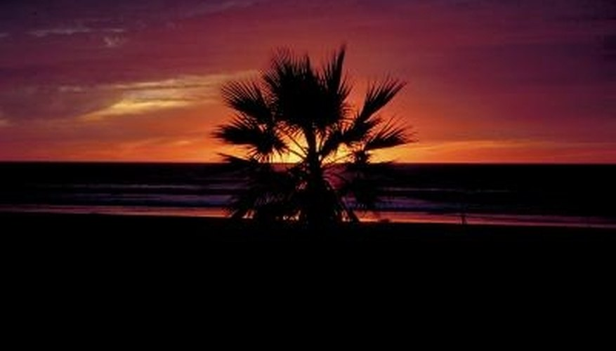 End your romantic date in San Diego by watching the sunset along the beach.
