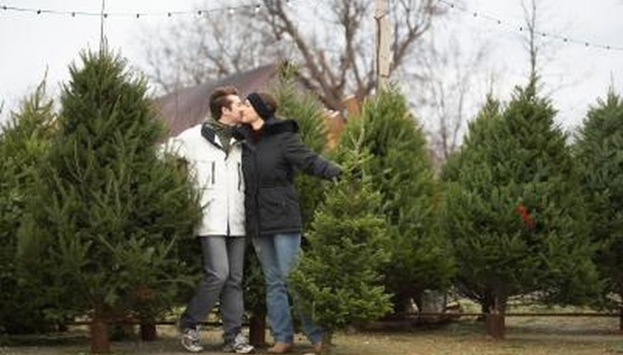 Christmas can be the best season for romance.