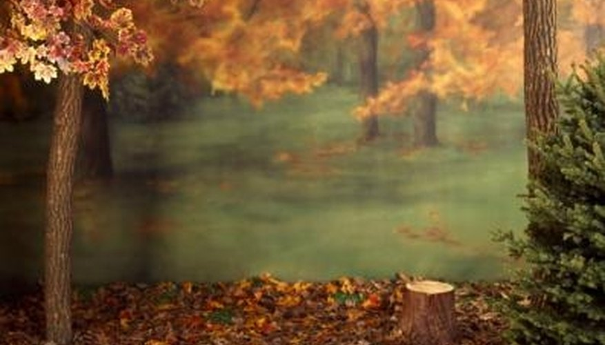 Autumn was a favorite theme of many Romantic poets.