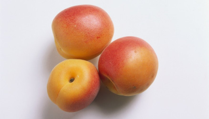 Apricot trees can be identified by fruit, foliage and other features.