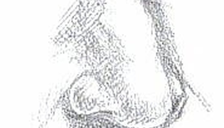 Leonardo da Vinci's Nose, drawn after his self portrait by author
