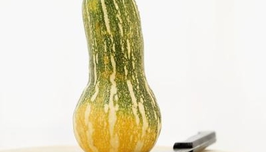 Cushaw squash is a type of winter squash.