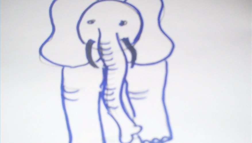 Draw elephant from the front