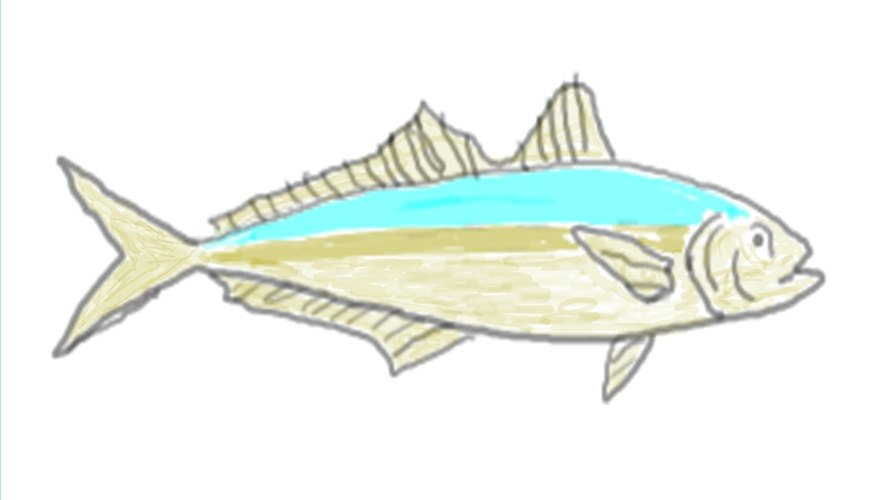 How to Catch Cigar Minnows With Gold Hooks