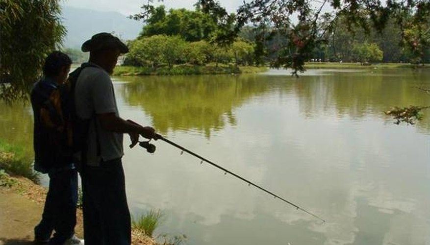 Fishing in sunny weather