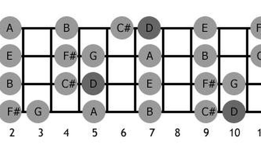 The first twelve frets (notes) on a bass guitar.