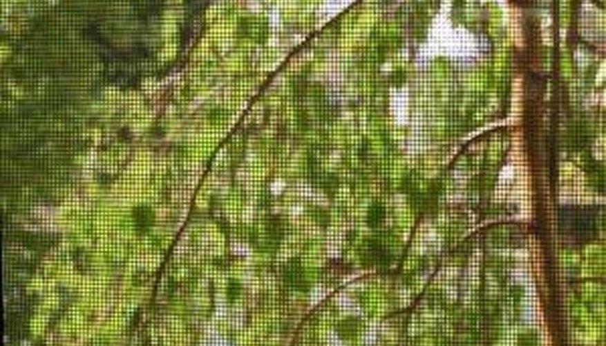 Make Wooden Window Screens