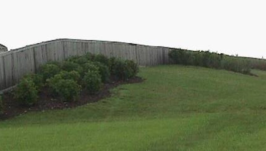 Shrubs planted along the rear edge of a berm