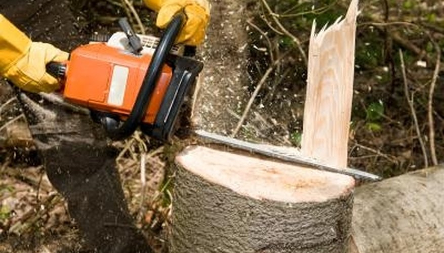 Keep the chain on your chain saw properly tightened for optimal performance.