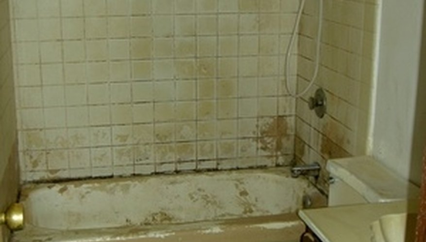 How to clean mold on a bathroom tile naturally homesteady for Clean mold in bathroom