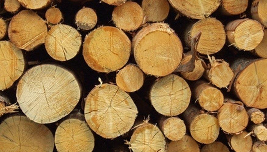 Seasoned logs burn much easier than fresh cut logs.