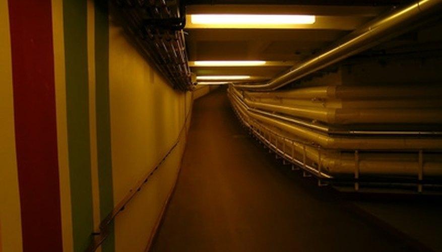 Mold thrives in damp, dark basements.