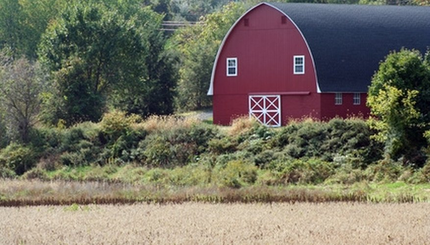 Some paint formulated for barns is still oil-based.