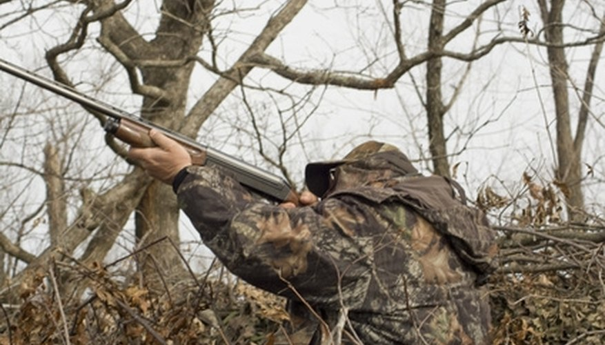 The Best Counties to Hunt on Public Land in Ohio