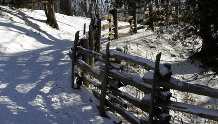 Fences can be many types and serve many purposes.