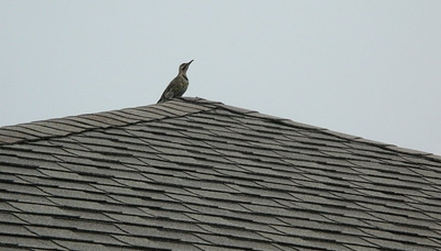 A sagging rooftop is often the result of damaged rafters.